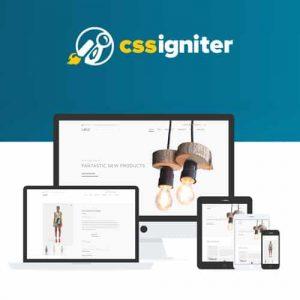 CSS Igniter Loge WooCommerce Theme