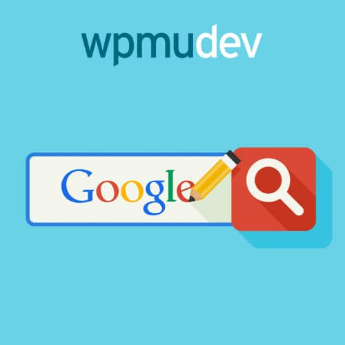 WPMU DEV Custom Google Search